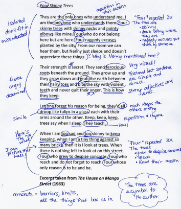 annotation picture 1.png